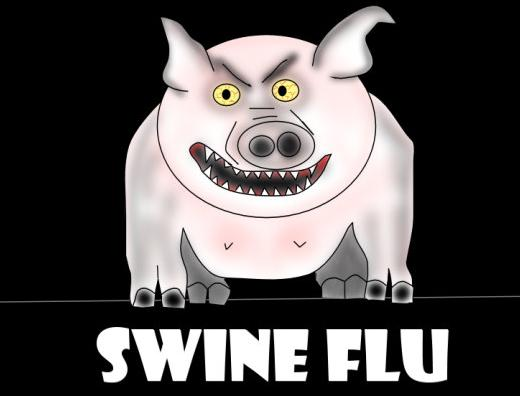 SwineFlu03 health  Swine Flu Facts and Updates
