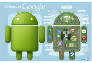 google-anatomy